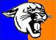 spt Otis-Bison logo