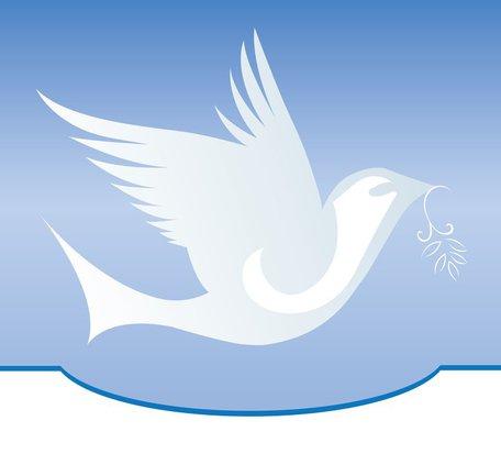 2-dove-obit.max-1200x675.jpg