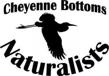 new slt bottoms