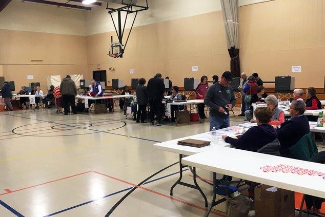 Lots of voters at polls.jpg