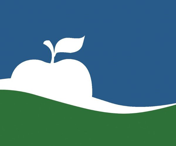 Manhattan flag